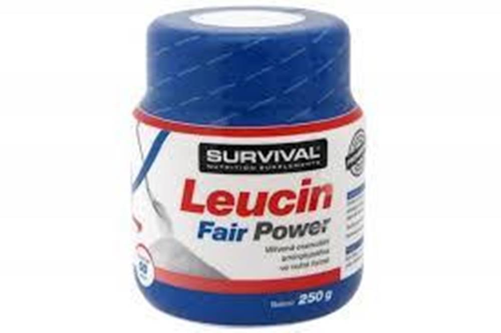 Survival Leucin Fairing Pow...