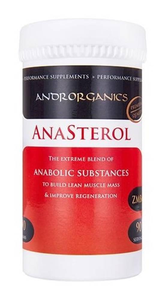 Androrganics Anasterol - Androrganics 90 g